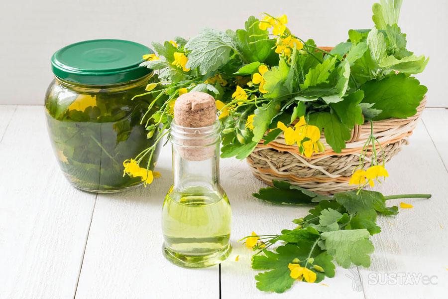 Лечение народными средствами при жидкости в коленном суставе: 5 лучших рецептов 33-3
